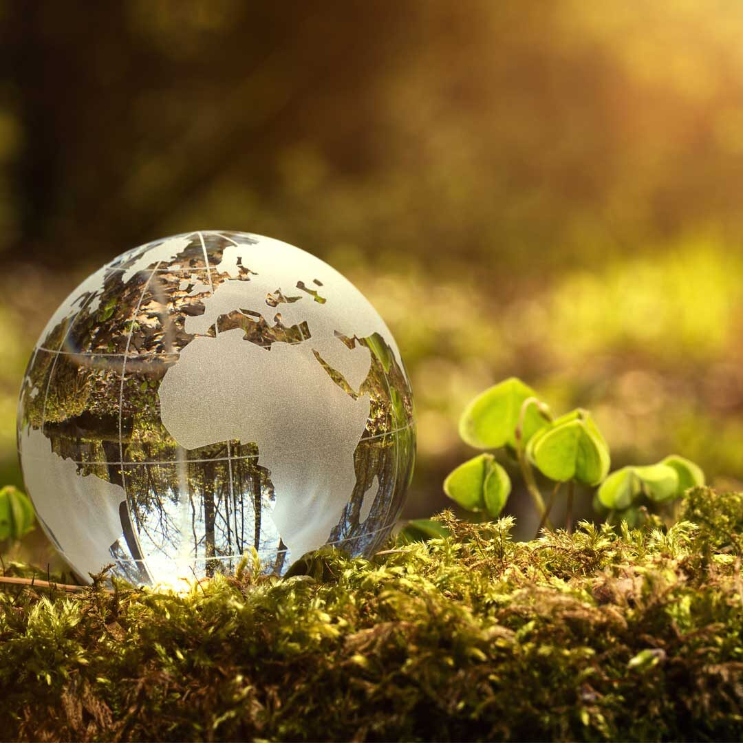 sustainable-travel-1